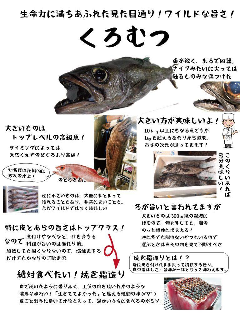 【魚図鑑】くろむつ