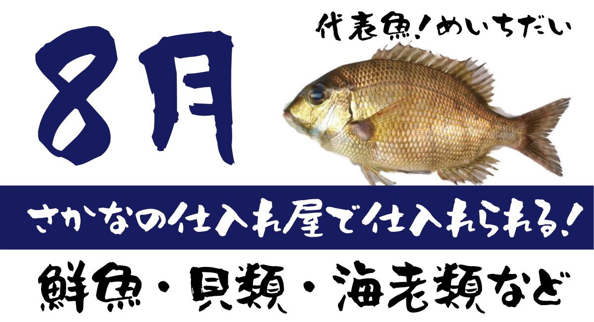 【さかなの仕入れ屋で入荷】8月が旬の美味しい魚!