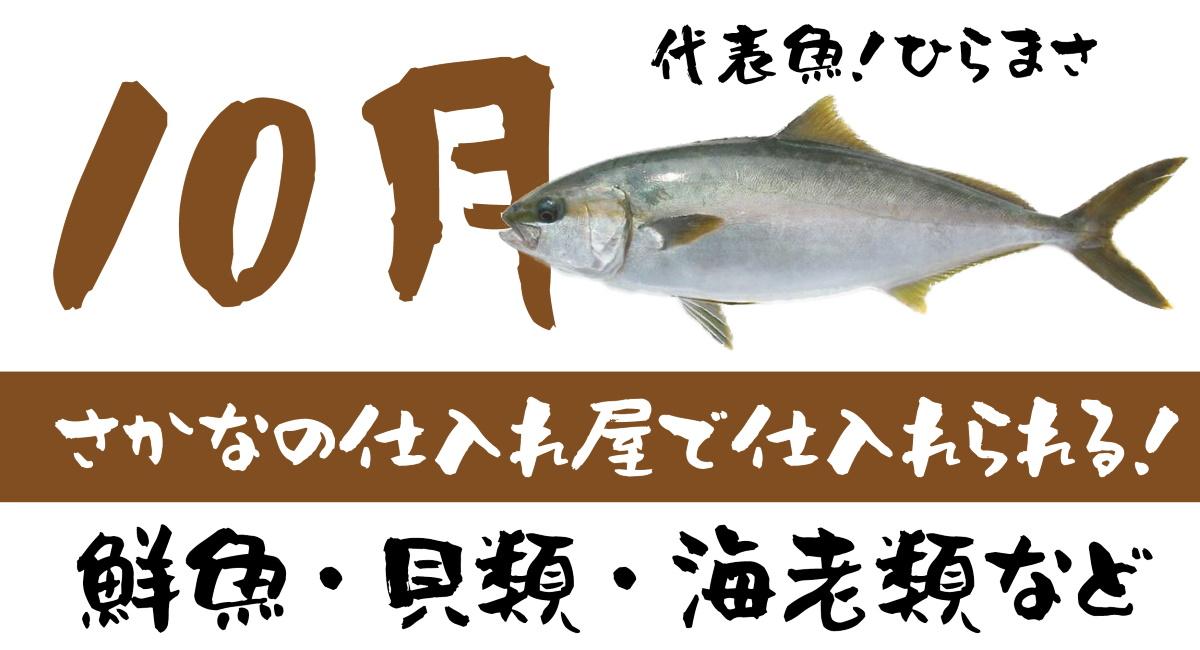 【さかなの仕入れ屋で入荷】10月が旬の美味しい魚!