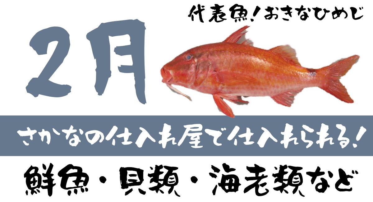 【さかなの仕入れ屋で入荷】2月が旬の美味しい魚!